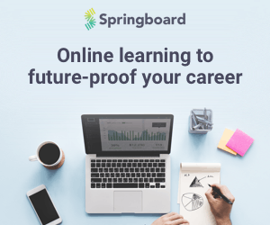 springboard programming languages course
